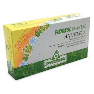 Fisiosol Plantae - Angelica