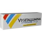 Vegetallumina Gel Antidolore